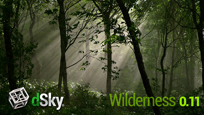 dsky-wilderness
